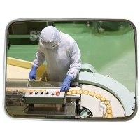 Industriespiegel Vialux® für spezielle Umgebungen, Edelstahl, gem. CE-Kennzeichnung Nr. 852 / 2004
