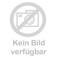 Klarsichtvisier mit Anti-Beschlag-Beschichtung für Schutzhelme -G3000C-